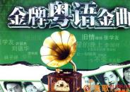 歌曲的魅力:黄先生的大众途锐丹拿272汽车音响
